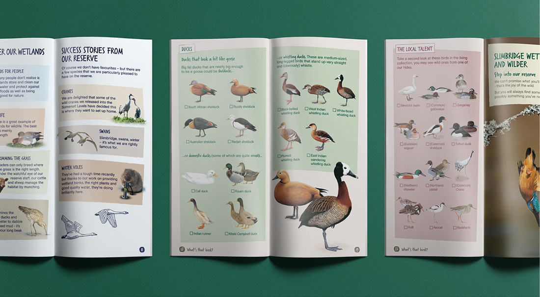 2017_WWT_Guide